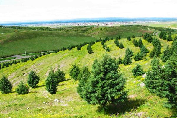 پارک جنگلی بارجین