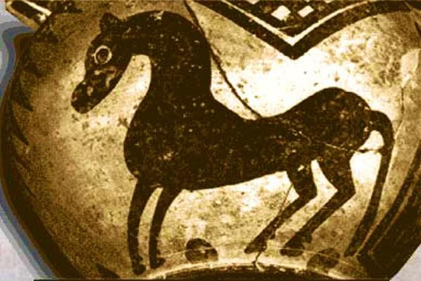 پرورش اسب مادها
